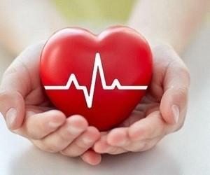 Сердце - cover