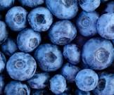 витаминный набор полезные свойства ягод
