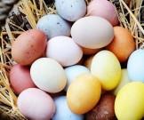 старинный способ окрашивания яиц природными средствами