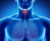 Как вовремя обнаружить нарушения в работе щитовидной железы