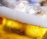 пиво губительно действовать организм