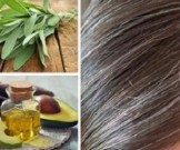 седые волосы причины появления натуральные средства ухода