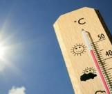 сильная жара провоцирует приступы страха депрессию