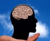 ученые поведали пользе забывчивости развития интеллекта