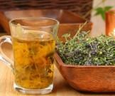 растения нормальной работы цнс заболеваниях щитовидки