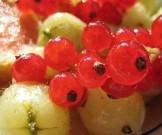 топ-17 самых полезных ягод организма
