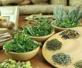 травяные средства удаления желчного пузыря