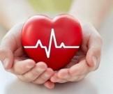 лекарственных растения сохранения здоровья сердца