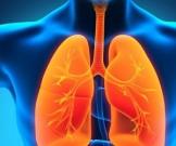 ученые выявили белок вызывающий рак легких