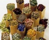 растворение тромбов бляшек простых народных рецептов