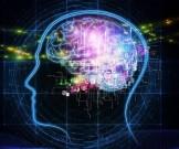 лучших привычек помогут сохранить молодость мозга
