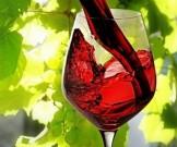 алкоголь вредит сердцу помогает