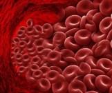 повысить гемоглобин день