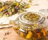 Растительные сборы против атеросклероза: 10 рецептов