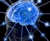 питание улучшения работы мозга