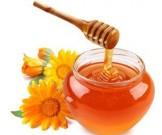 медики проверили целебные свойства меда