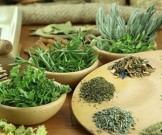 лечение парапроктита помощью травяных сборов