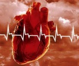 внешняя среда сердечно-сосудистые заболевания