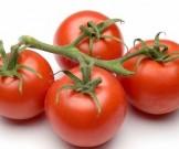 хранить помидоры холодильнике рекомендуется