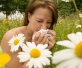 взгляд аюрведы аллергический ринит