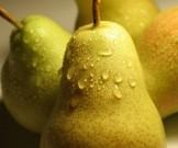 груша день способствует похудению