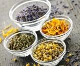 рецептов лекарственных трав желтухе гепатите