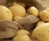 секретов сырой картофель полезен кожи