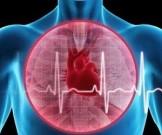 найден быстрый способ улучшить состояние сердца инфаркта