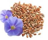 льняное семя рецепты самых частых проблемах здоровьем