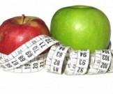определен фрукт содержит универсальный жиросжигатель