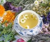 красота здоровье кожи рецептов основе лекарственных растений
