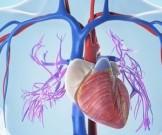 запах прогорклого жира замедлит сердцебиение