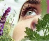 гигиена зрения соляризация пальминг водные процедуры