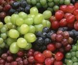 диетологи назвали ягоду способствует омоложению