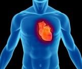 натуральные средства лечения повышенного артериального давления улучшения работы