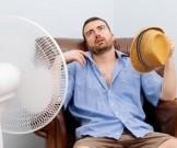 жаркая погода вызывает перепады настроения жадность