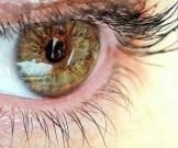 продуктов защищающих зрение